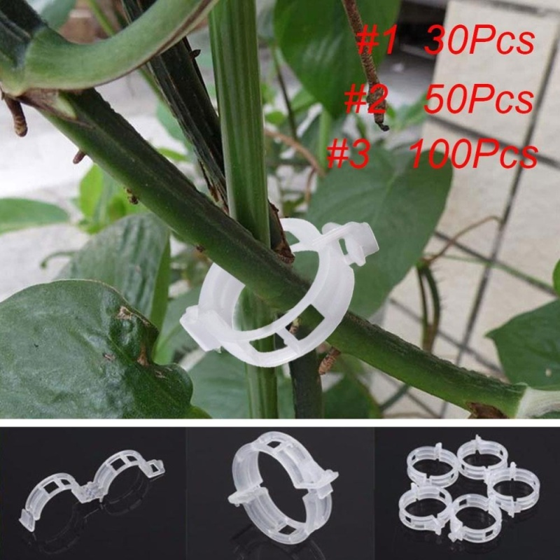 Useful White Tomato Clips Connects Plants Supports Vines Trellis Cages Fixed - intl