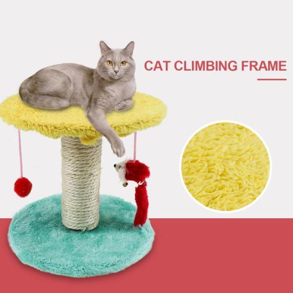 Cột Cây Cào Móng Cho Mèo, Đồ Nội Thất Phòng Tập Thể Hình, Sàn Nhảy Cho Mèo