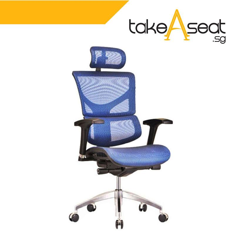 SAIL Basic Ergonomic Office Chair (Blue)