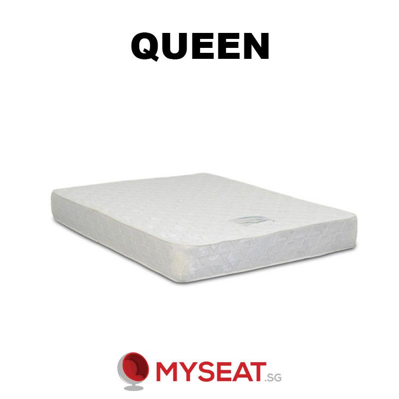 FOAM Mattress in Single / Super Single / Queen