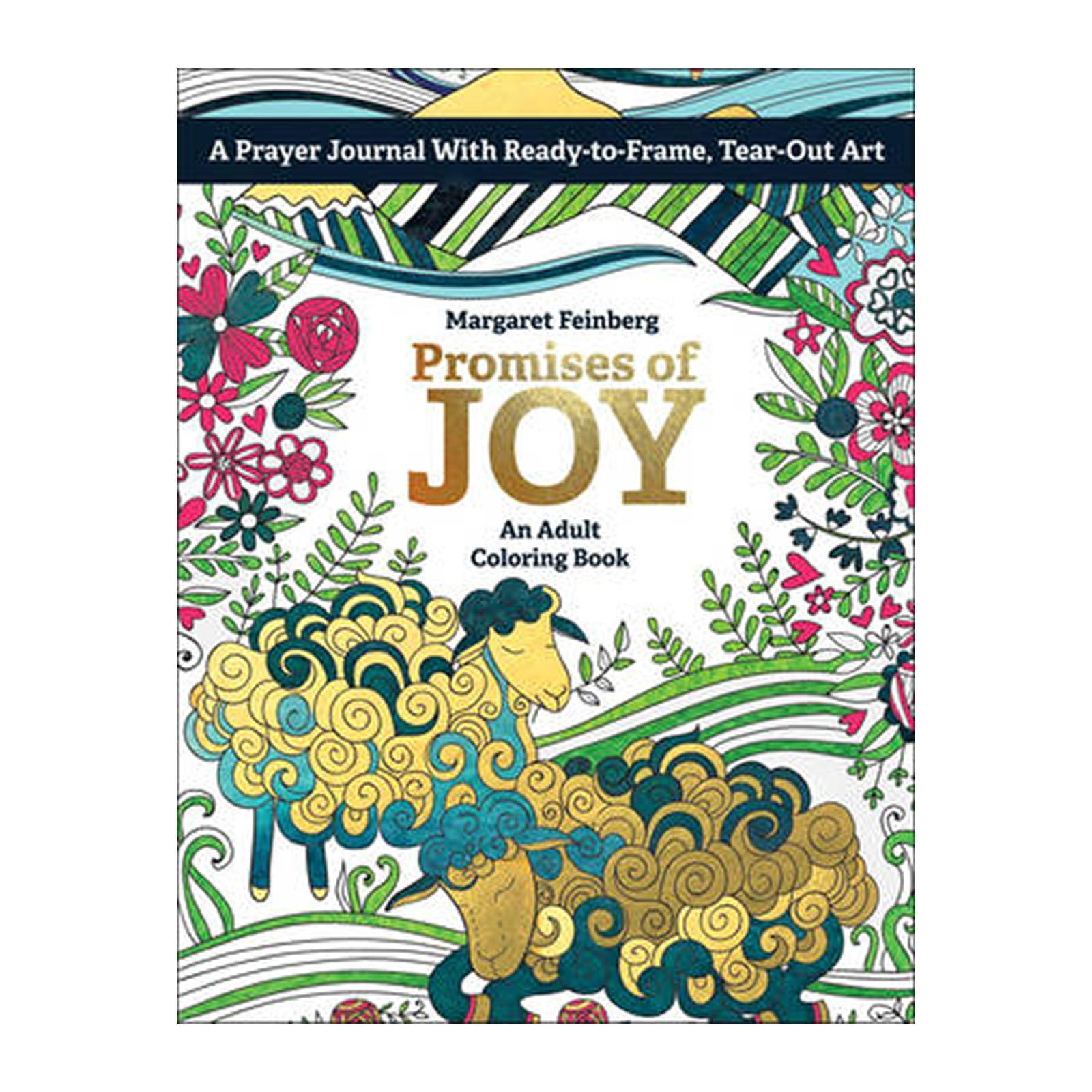 Promises Of Joy: An Adult Coloring Book (Paperback)