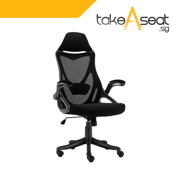 [Pre-Order] C65 Office Chair (Self Setup)(Ships After 07 May) Singapore