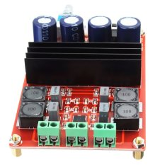 Price Comparisons 2 100W 12V 24V Dual 2 Channel Digital Audio Amplifier Board Tpa3116 For Arduino