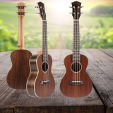 Who Sells 23 Rosewood Hawaiian Guitar Ukulele 19 Frets Instrument Concert Acoustic Intl
