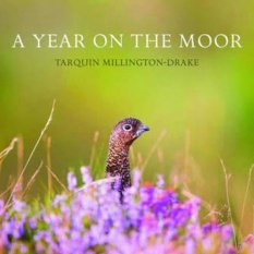 A Year on the Moor.