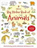 Best Offer Big Sticker Book Of Animals Author Jessica Greenwell Sam Taplin Isbn 9781409535126