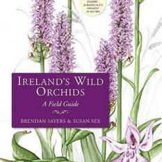 Irelands Wild Orchids (Author: Brendan Sayers, Susan Sex, ISBN: 9781848891692)