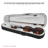Price Professional 4 4 Full Size Violin Triangle Shape Case Box Hard Super Light With Shoulder Straps Gray Intl China