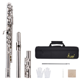 Buy Western Concert Flute Silver Plated 16 Holes C Key Cupronickel Woodwind Instrument With Cleaning Cloth Stick Gloves Mini Screwdriver Padded Bag Intl Cheap On China
