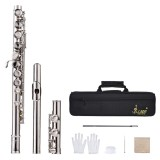Buy Cheap Western Concert Flute Silver Plated 16 Holes C Key Cupronickel Woodwind Instrument With Cleaning Cloth Stick Gloves Mini Screwdriver Padded Bag Intl