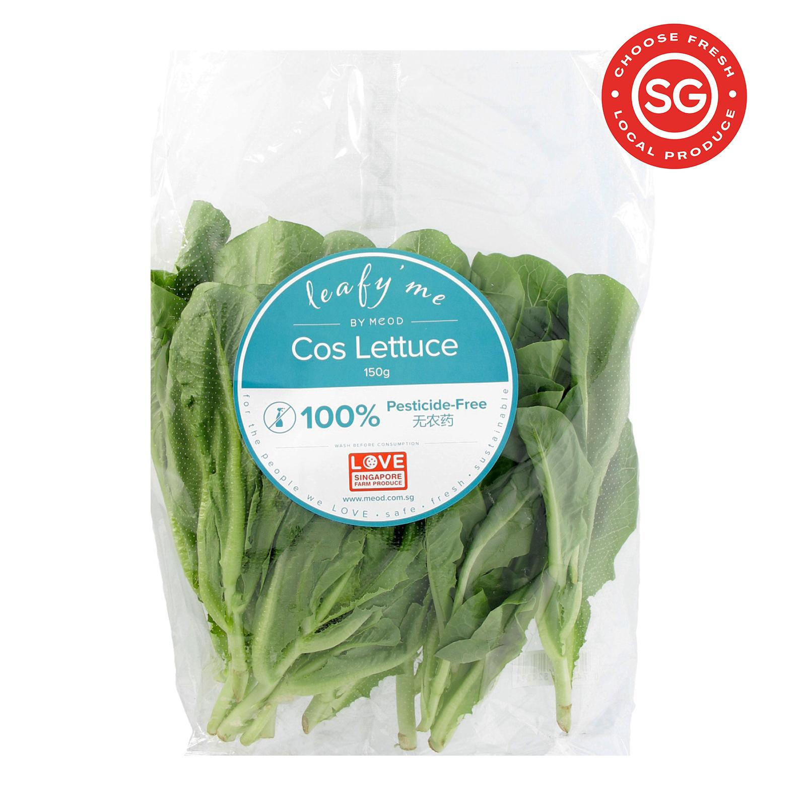 MEOD Leafy'Me Cos Lettuce
