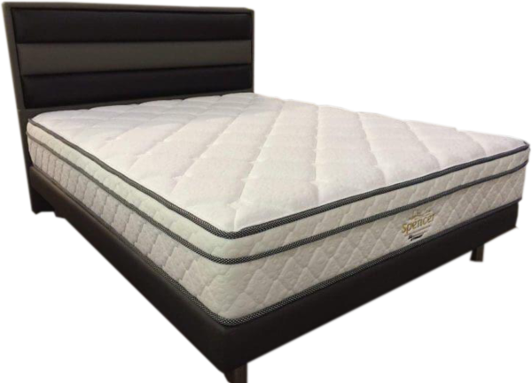 (Pre Order) FACTORY OUTLET Dr Care Individual Pocket Spring with Free Contemporay Bed