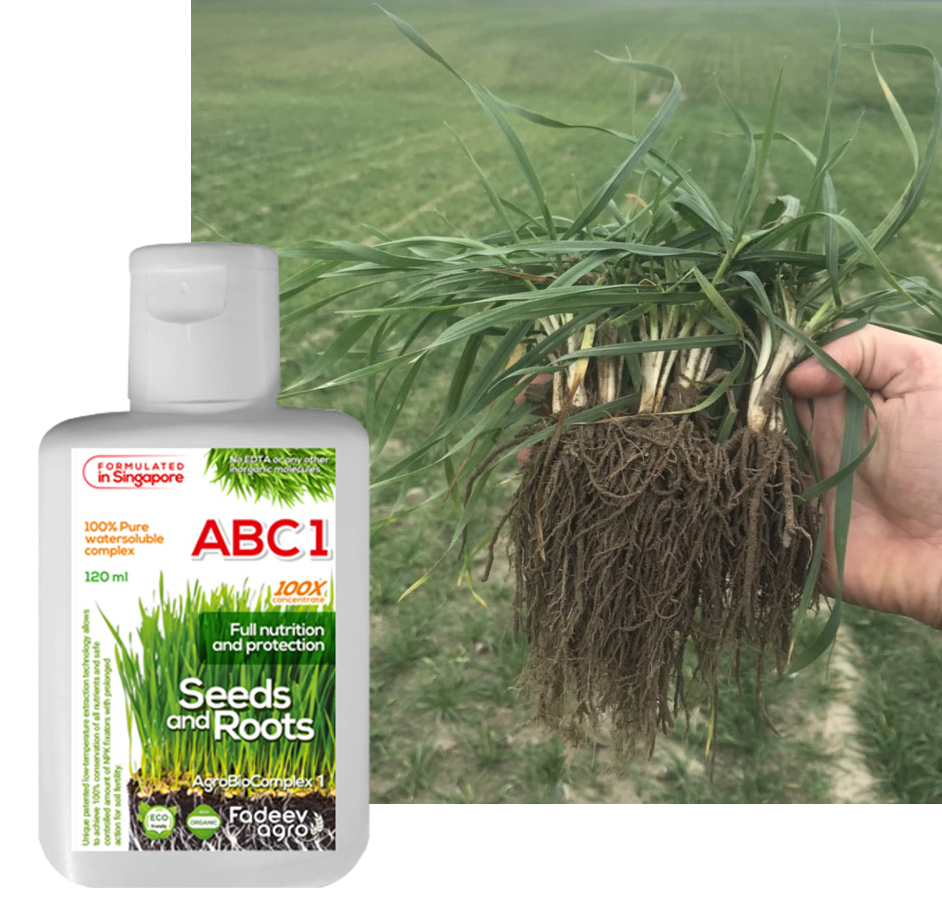 Organic fertilizer AgroBioComplex-1. Seeds, roots, soil and leaves. 100X concentrate.