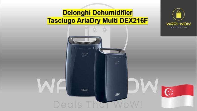 Delonghi Dehumidifier Singapore