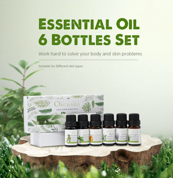 Buy BeNatu Essential Oils Set - [Tea Tree, Lavender, Eucalyptus] [Lemon, Mandarin, Bergamot] [Sweet Orange, Grapefruit, Bergamot] [Peppermint,Rosemary, Lemongrass] - Organic Aromatherapy Kit for Diffuser, Massage,Skin Care,Soap & Candles Making 3 Packs - 10ml Singapore