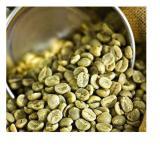 Aspreso Brazil Yellow Bourbon Cachoeira Green Coffee Beans 1Kg Lowest Price