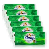 Buy Kleenex Clean Care Bath Tissue Aloe Vera 10X200Sheets X 6 Singapore