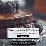 Vietnam Arabica Coffee Beans Hangover Cheap
