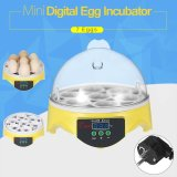 Who Sells 7 Eggs Mini Digital Egg Incubator Hatcher Transparent Eggs Hatching Machine Automatic Temperature Control For Chicken Duck Bird Eggs Ac220V Intl Cheap