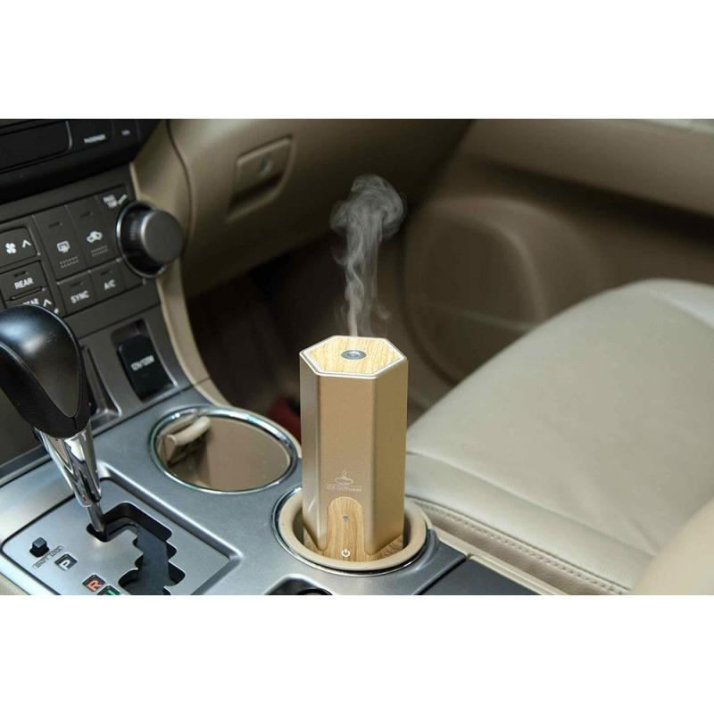 leegoal 50ml Mini Air Purifier Cool Mist Diffuser Car USB Ultrasonic Humidifier (Gold) - intl Singapore