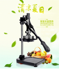 Stainless Steel Manual Juicer In Stock