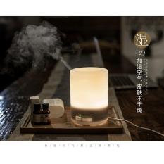 Review Muji Style Essential Oil Diffuser Aroma Ultrasonic Humidifier Air Purifier 300Ml On Singapore