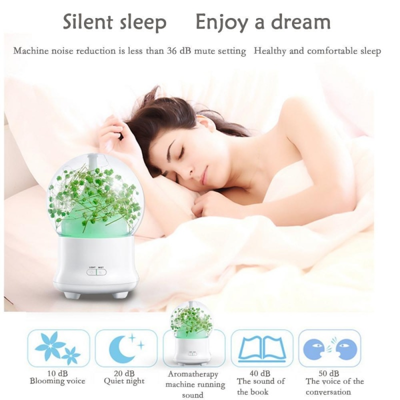 weizhe Ultrasonic Aromatherapy Essential Oil Diffuser Aroma Diffuser Cool Mist Humidifier Preserved Fresh Flower-UK PLUG - intl Singapore