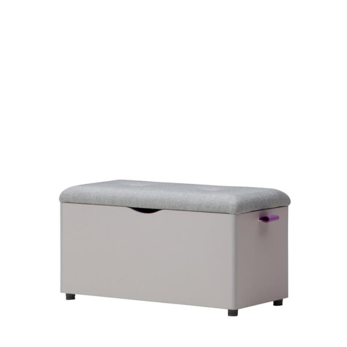 Iloom Roy Bench (Storage Type) F699 Purple