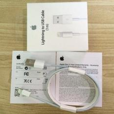 Sale Apple Lightning Cable 1M On Singapore