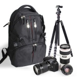 Buying Beau Waterproof Shockproof Digital Slr Dslr Camera Bag Soft Padded Backpack Intl