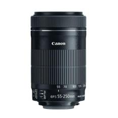 Price Canon Ef S 55 250Mm F 4 5 6 Is Stm Telephoto Zoom Lens Black Online Singapore