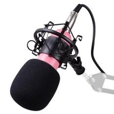 Condenser Pro Audio Bm800 Microphone Sound Studio Dynamic Mic Shock Mount Intl Best Buy