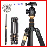 Where Can You Buy Dream Q666 C Qzsd Q666C Professional Compact Carbon Fiber Camera Tripod Monopod With Ball Head Quick Release Portable Traveling Tripod For Dslr Camera Intl