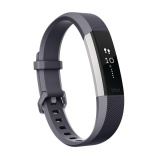 Price Fitbit Alta Hr Heart Rate Fitness Wristband Small Size 5 5 6 7 Intl Fitbit Online