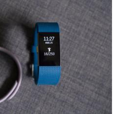 Sale Fitbit Charge 2 Fitness Wristband Blue Small Fitbit Wholesaler