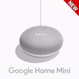 Google Home Mini Chalk Intl Review