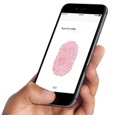 Home Button Sticker Button Fingerprint Indentification Touch ID for iPhone - intl