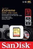 Sandisk Extreme Sdhc Class 10 32Gb Sdsdxne 032G Gncin Coupon Code
