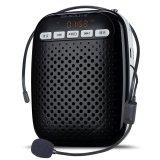 Ten Degrees S378 Small Bee Speaker Teacher Dedicated Teaching Wireless Portable Class Intl Reviews