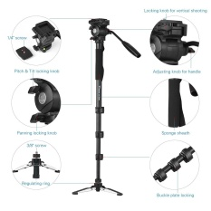 Buy Weifeng Wf 3958M Professional Portable Aluminum Alloy Camera Monopod With Fluid Pan Head Unipod Holder 1 4 3 8 Scr*W Mounts Max Height 145Cm Max Load Capacity 5Kg Intl