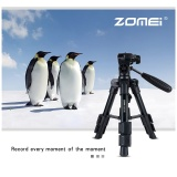 How Do I Get Zomei Q100 Portable Aluminum Tripod Compact Desktop Macro Mini Tabletop Bracket With Head For Sony Canon Nikon Dslr Camera Cellphone Intl