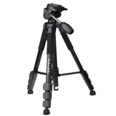 Zomei Q111 Professional Tripod Camera Stand with Pan Head for DSLR - intl Singapore