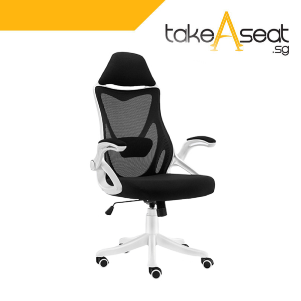 C65 Office Chair (Self Setup) Singapore