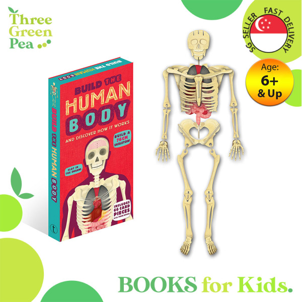 Build the Human Body (Build It) Hardcover Book and 3D Model of a Skeleton - Early Learning for Children