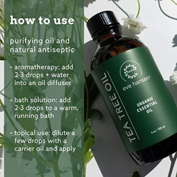 Buy Eve Hansen Organic Tea Tree Oil (4oz) Highest Quality Melaleuca Alternifolia Pure Tea Tree Oil for Skin, Scalp, Nail Health and Aromatherapy Acne Treatment, Lice Treatment and Skin Tag Remover Singapore
