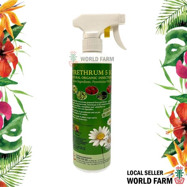 Pyrethrum 5 EC Natural Organic Insecticide 500ml