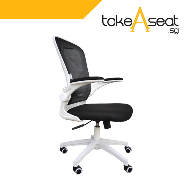 [Pre-Order] New C55 Office Chair (Self Setup)(Ships After 22 May) Singapore