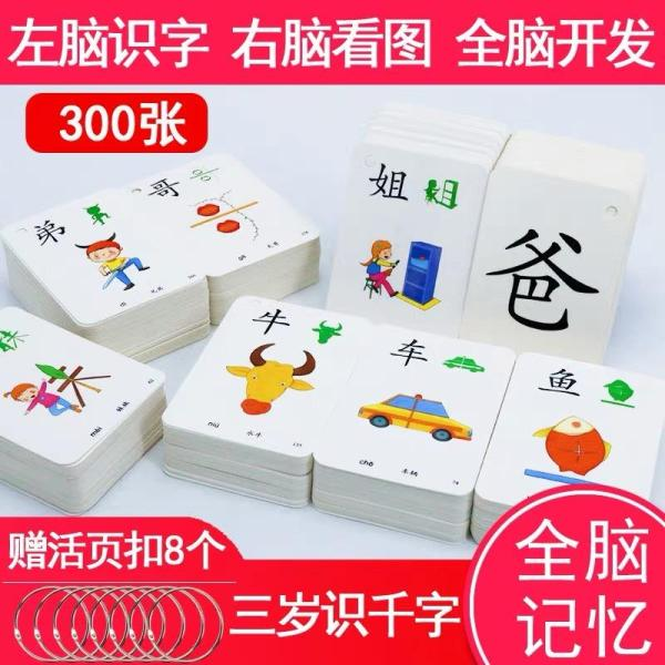 G-gourd® 300pcs Learn Chinese Character Word Flash Cards Baby Train Brain Learning Word Card