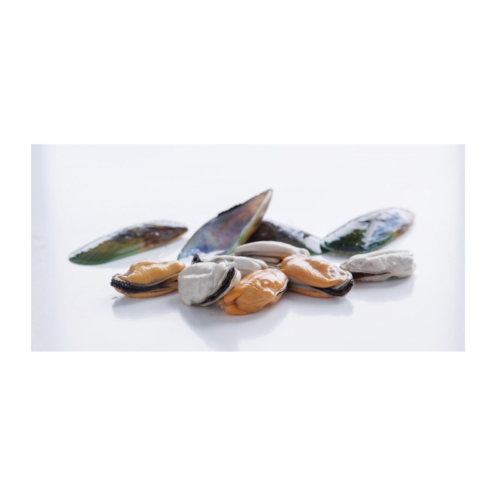 Catch Seafood New Zealand Mussel Meat - Frozen