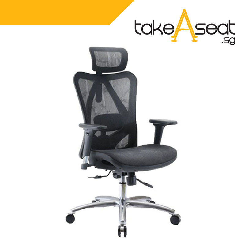 [Pre-Order] M19 Office Chair (Self Setup) ★ Executive Office Chair ★ Mesh Chair ★ Adjustable Lumbar Support ★ Home/Office Use (Ships After 14 June) Singapore